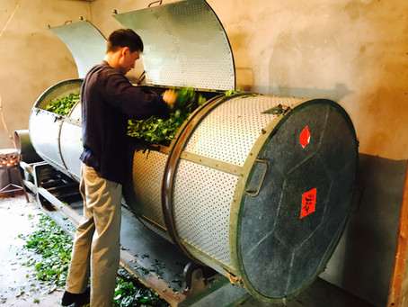Blog 12: What Makes Oolong Tea Special?