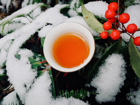 Blog 82: What Does Snow/Coldness Do To Our Tea Plants?