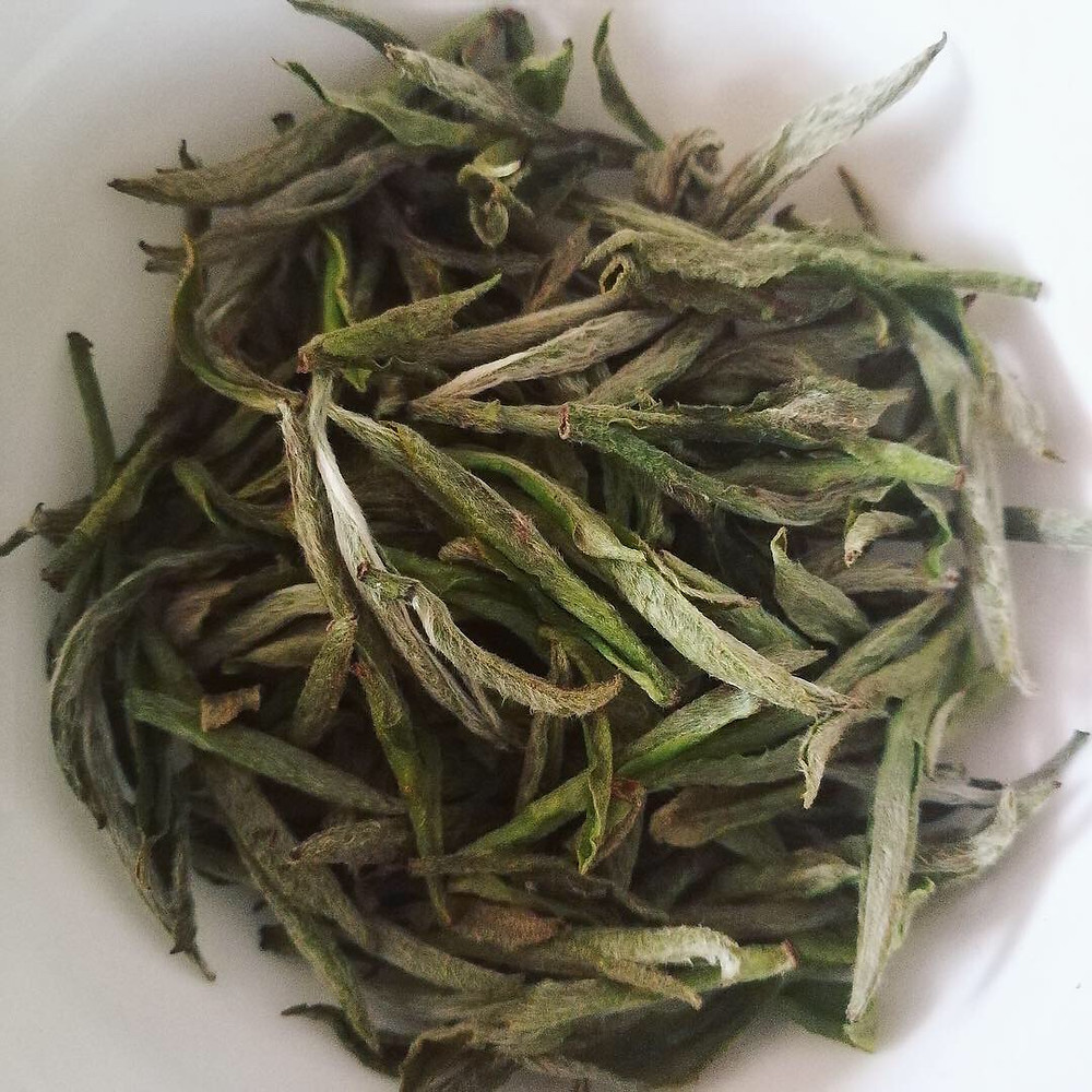 "Valley Brook Tea | Blog | Properly withered and dried white tea ""Silver Needle"" (click for product)"