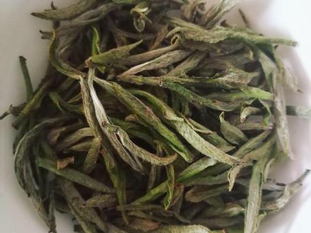 Blog 108: Pre-soaking Your Tea?