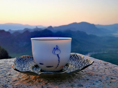 Blog 57: The Journey of Tea in Our Body (the health benefit of tea)
