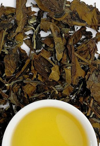 Shou-Mei Tea Brick