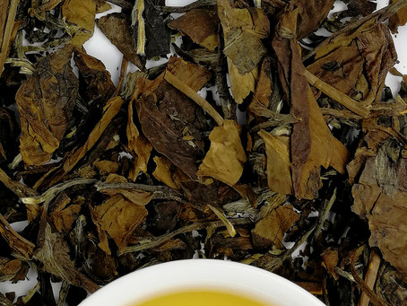 Blog 90: Why Shou Mei is A Great Introduction to White Tea