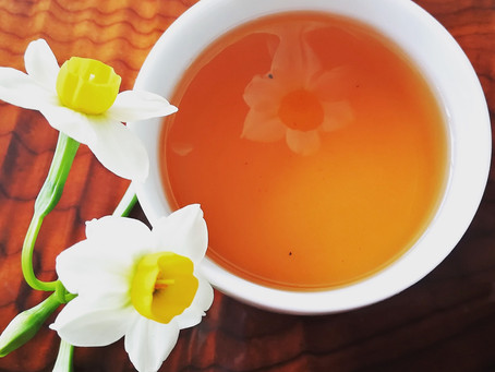 Blog 81: Similarities That All Good Teas Share