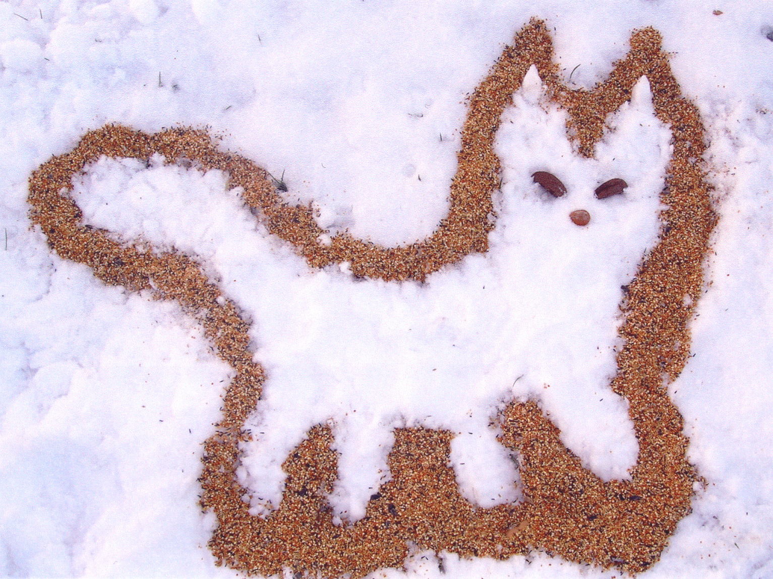 Birdseed Snow Fox