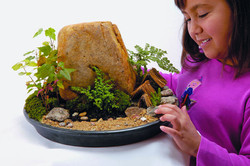 Mountain Dish Garden