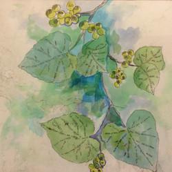 Leaf Collection Blue 1