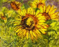 Sunflower with Purple