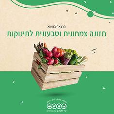 הרצאה בנושא תזונה צמחונית וטבעונית לתינוקות