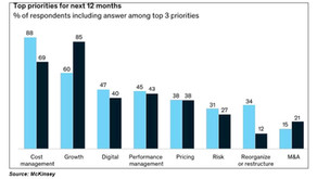Stratence Partners helps on the top 5 priorities defined by McKinsey