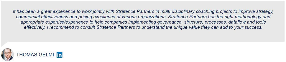 Thomas Gelmi Stratence Partners Referenc