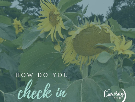 How do you check in with yourself?