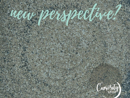 Would you benefit from a new perspective?