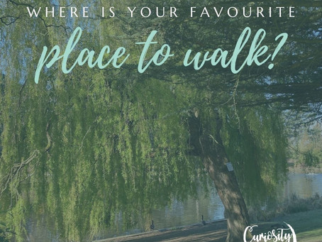 Where do you walk?