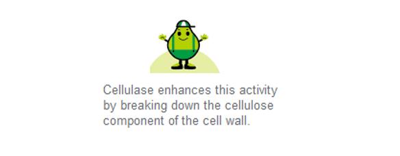 Cellulase.png
