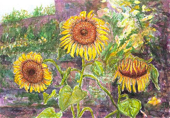 Russian Sunflowers