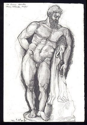 Hercules - SOLD