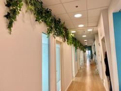 צמחיה מלאכותית על קיר