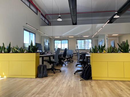מגמות בעיצוב צמחיה למשרדים