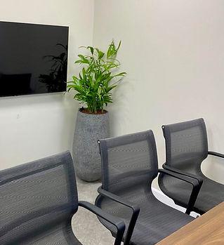 צמחיה חדר ישיבות.jpg