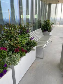 גינות גג למשרדים - לוטם צמחיה