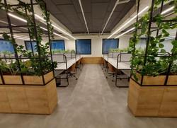 צמחיה מלאכותית למשרד