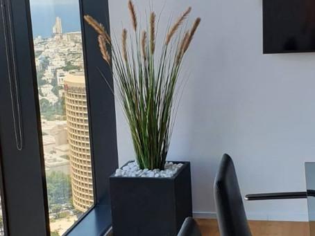 צמחיה מלאכותית במשרד