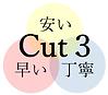 Cut3ロゴ(Cut3).png