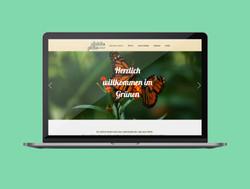 Schoen-Gruen Website