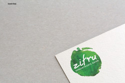 Zifru Logo Kopie