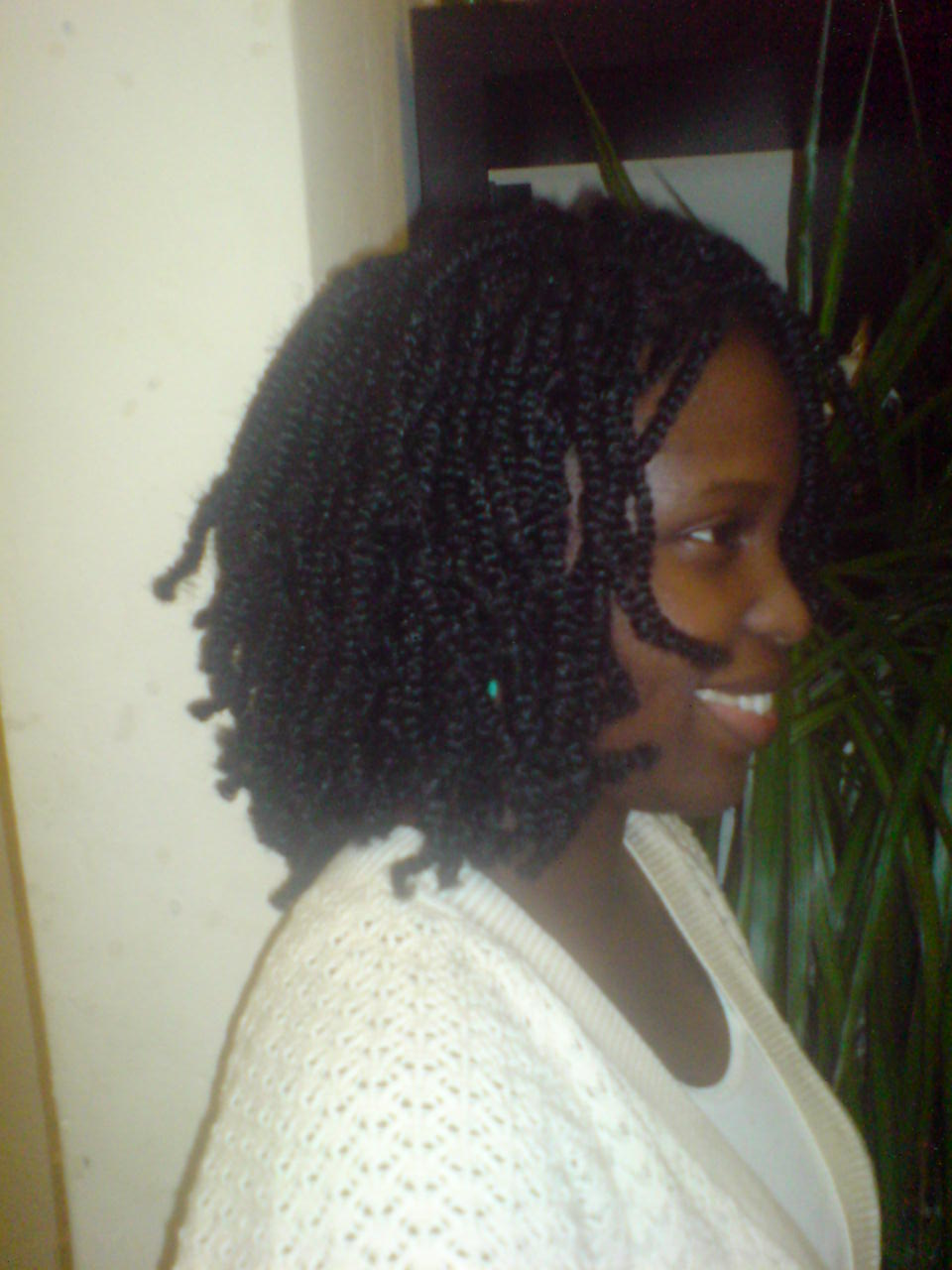 Two Strand Twist Extensions.