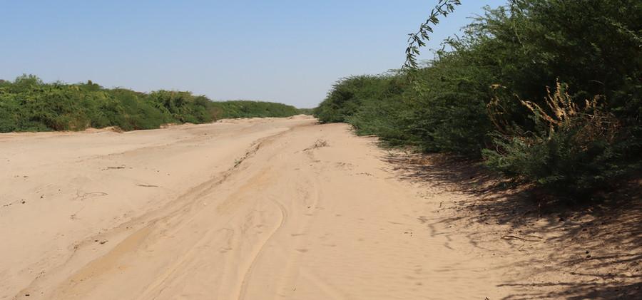 Ewaso Ng'iro River at Merti
