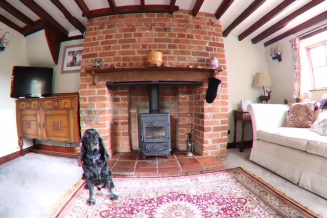 Livingroom Woodburner