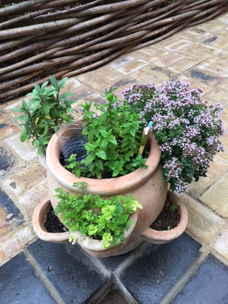 Belle Cottage Herbs