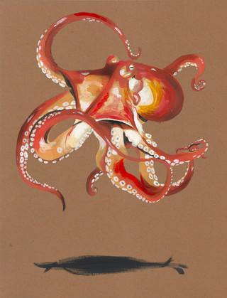 octopusd.jpg