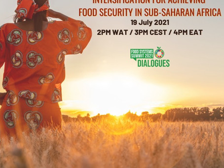 The Role of Sustainable Intensification for Achieving Food Security in Sub-Saharan Africa