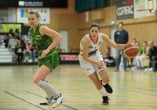 COUY8179_Basket_Aplemont_Furdeheim_N1F_(
