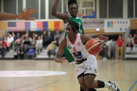 COUY5836 Basket Aplemont Sceaux NF1 Bale