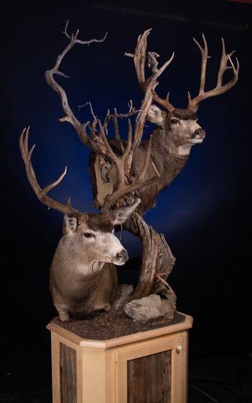 Double Deer Pedestal