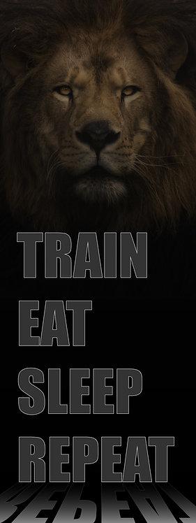 Vertical Train Eat Sleep Repeat 3'x8'