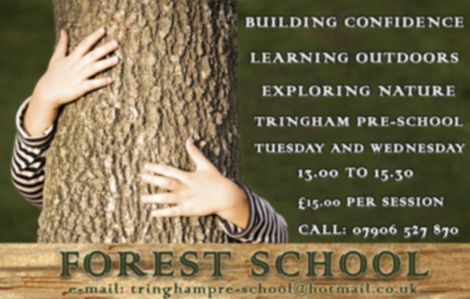 Tringham forest school