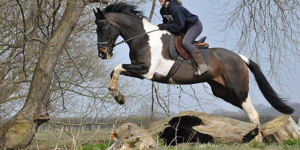 Arena XC practise, with Liv Lay