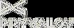 logo_pryvalov_silver.png