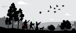 Star Wars Silhouettes