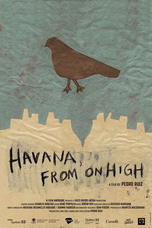Havana from on high