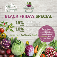 Copy of Black Friday special (1).png