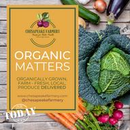 organic matters (1).png