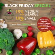 Copy of Black Friday special.png