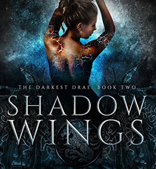 Shadow Wings by Raye Wagner & Kelly St. Clare