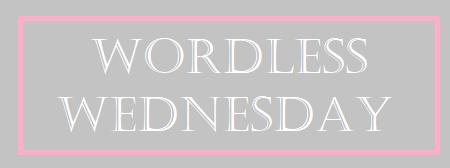 Wordless Wednesday June 3rd, 2020